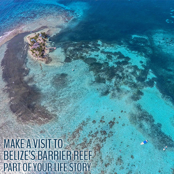 Discover the Belize Barrier Reef with Belizean Dreams