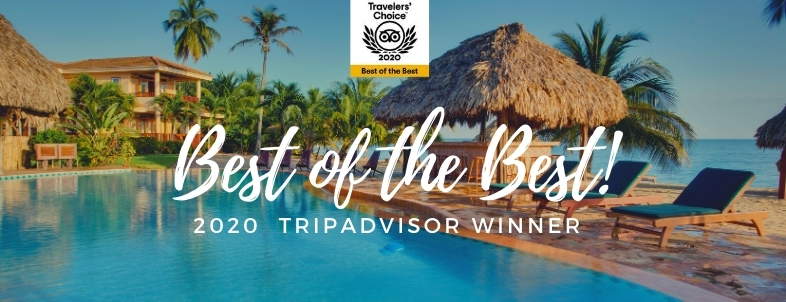 TripAdvisor's Best Small Hotels in Central America List Honors Belizean Dreams!