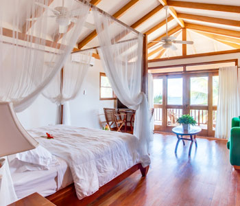 Belize One Bedroom Premium Accommodations