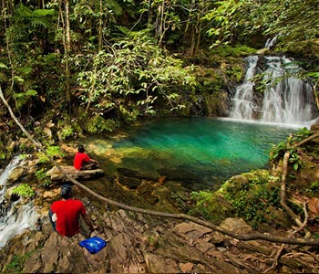 Belize Jungle Hiking Tours
